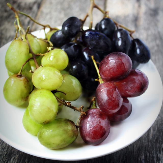 """Black, Green and Red grapes in plate"" stock image"
