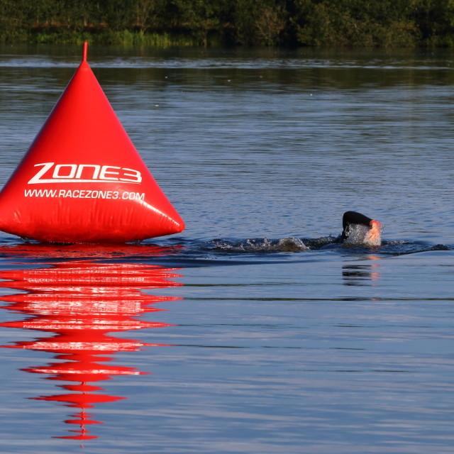 """Lake swimmer"" stock image"