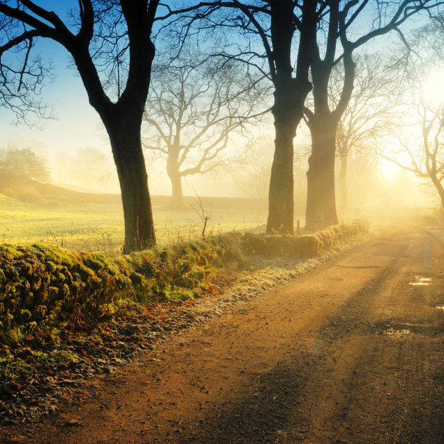 """""""Sunrise over the Road"""" stock image"""