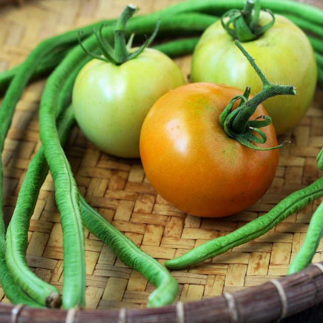 """Tomato and Long Bean"" stock image"