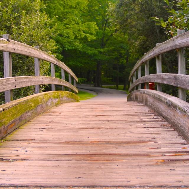 """bow bridge, hedden park, nj parks"" stock image"