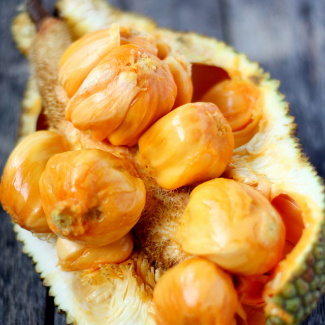 """Cempedak - Tropical Fruit"" stock image"