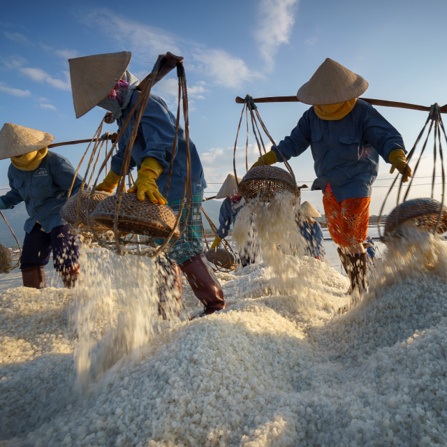 """Salt harvesting 1"" stock image"