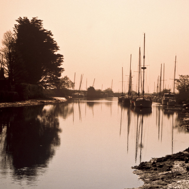 """""""Morning on the River Frome"""" stock image"""
