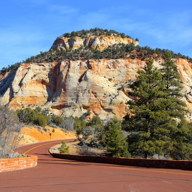 """""""The Zion Canyon Scenic Drive from Carmel Tunnel in Zion National Park, Utah, USA [United States of America]"""" stock image"""