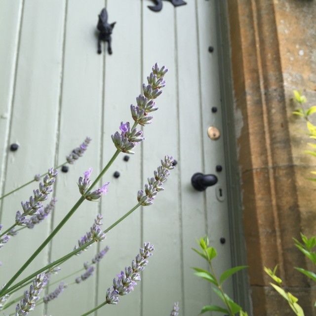 """Old cottage door with heather"" stock image"