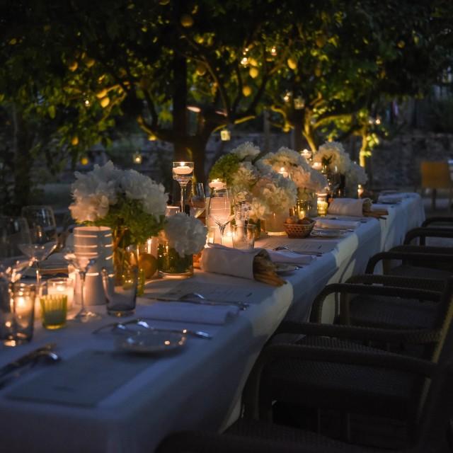 """Romantic dinner"" stock image"