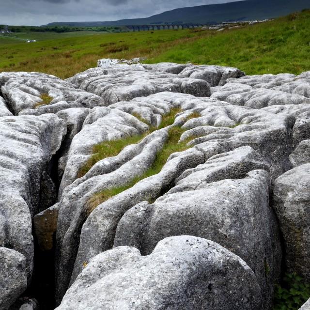 """""""Limestone Pavement"""" stock image"""