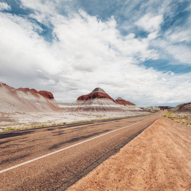 """Petrified Forest National Park, New Mexico"" stock image"