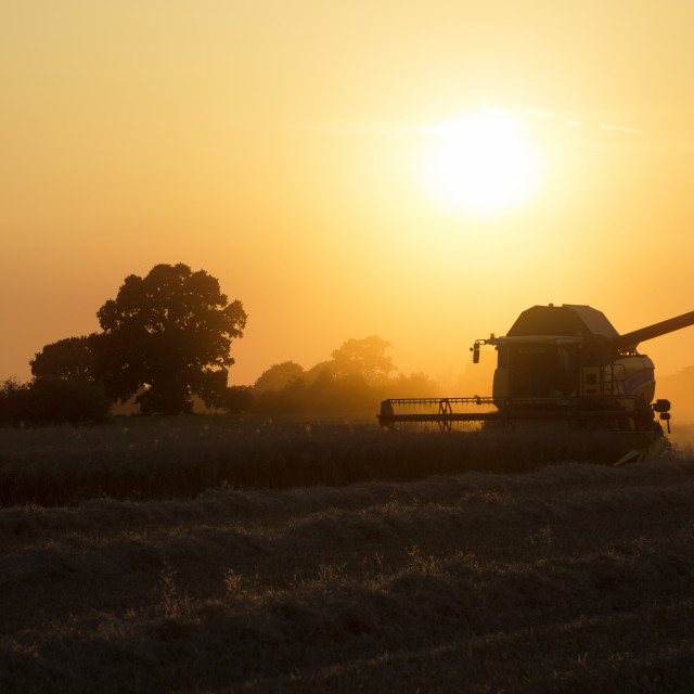"""Combine Harvester at sunset"" stock image"