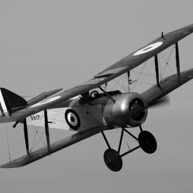 """Sopwith Pup 9917, monochrome version"" stock image"