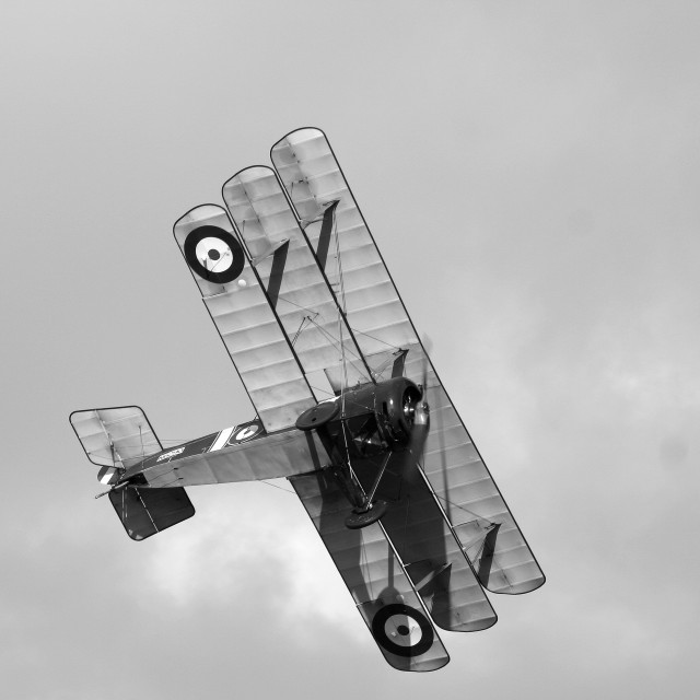 """Sopwith Triplane N6290, monochrome version"" stock image"