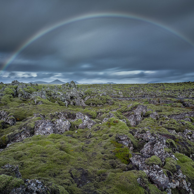 """rainbow over mossy field"" stock image"