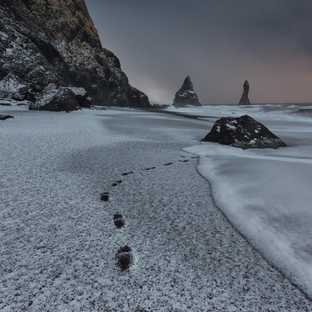 """winter beach"" stock image"