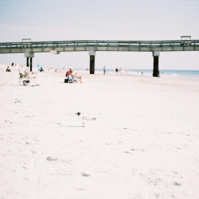 """St Augustine beach, Florida, USA"" stock image"