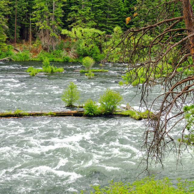 """Deschutes River in Central Oregon"" stock image"