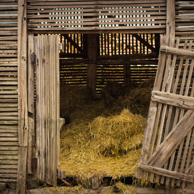 """Barn full of hay"" stock image"