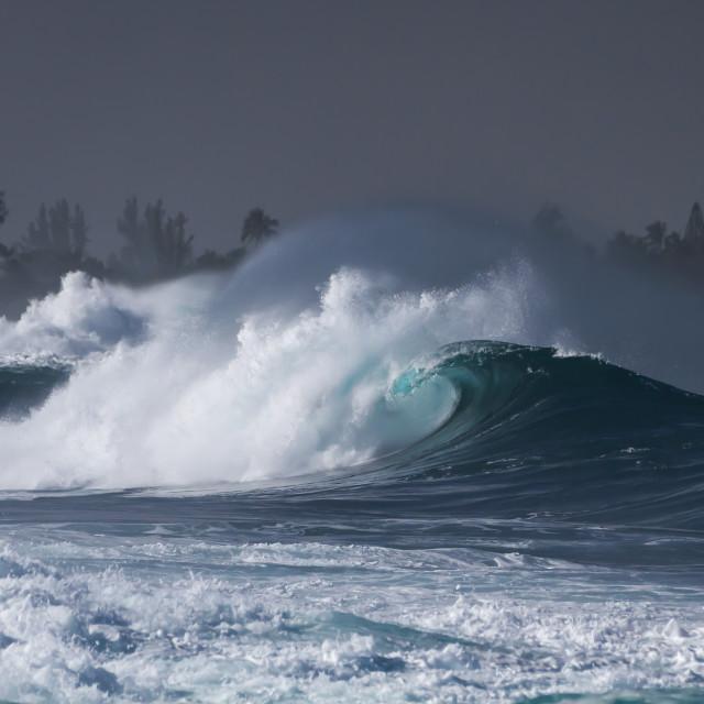 """Hawaii Seascape"" stock image"