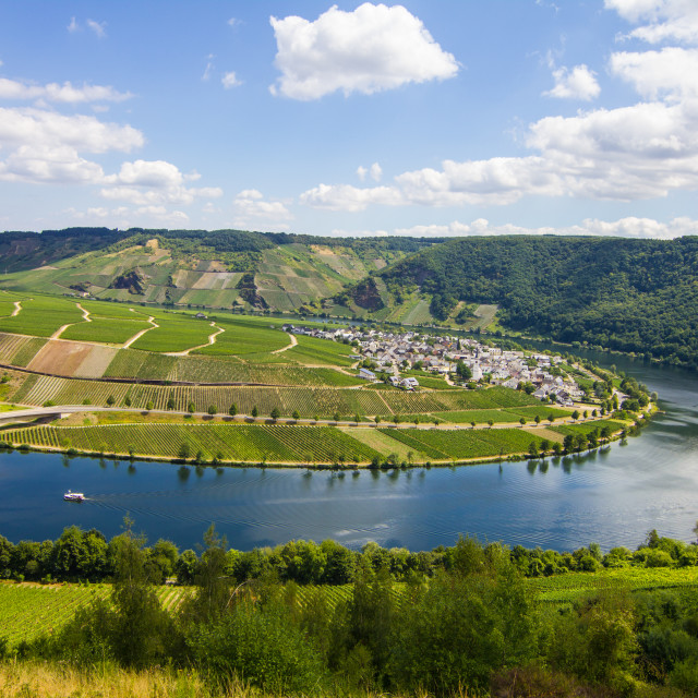 """""""Minheim in the Moselle valley, Germany landscape"""" stock image"""