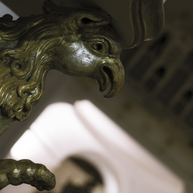 """""""old griffin"""" stock image"""