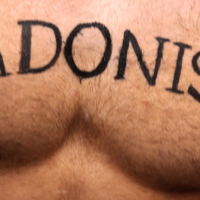 """Adonis"" stock image"