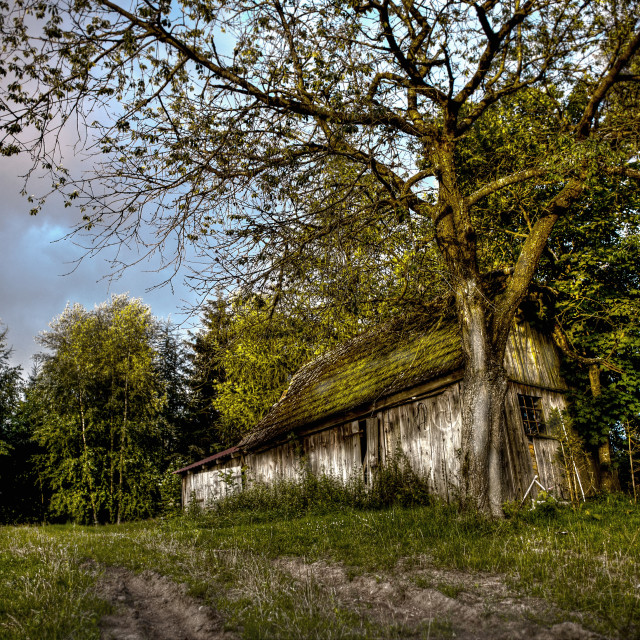 """Old Wooden Hut"" stock image"
