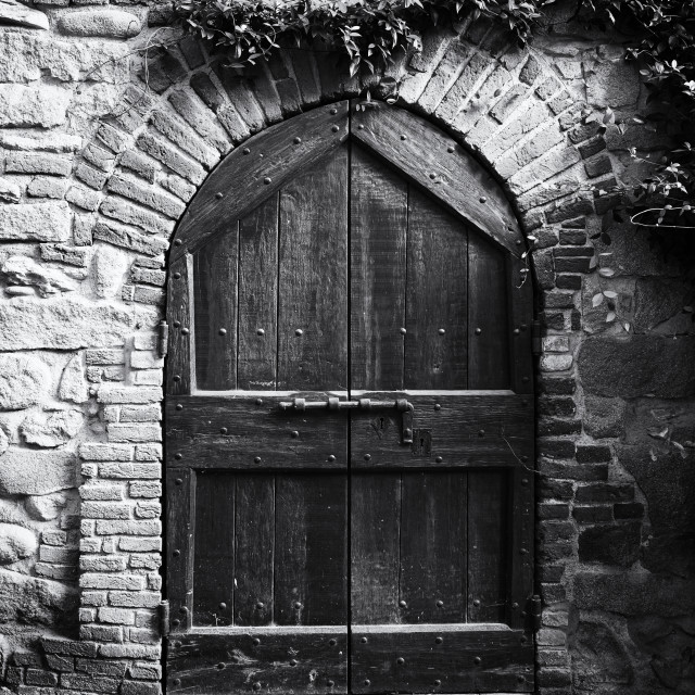"""""""Medieval Wood Door. Black and White"""" stock image"""