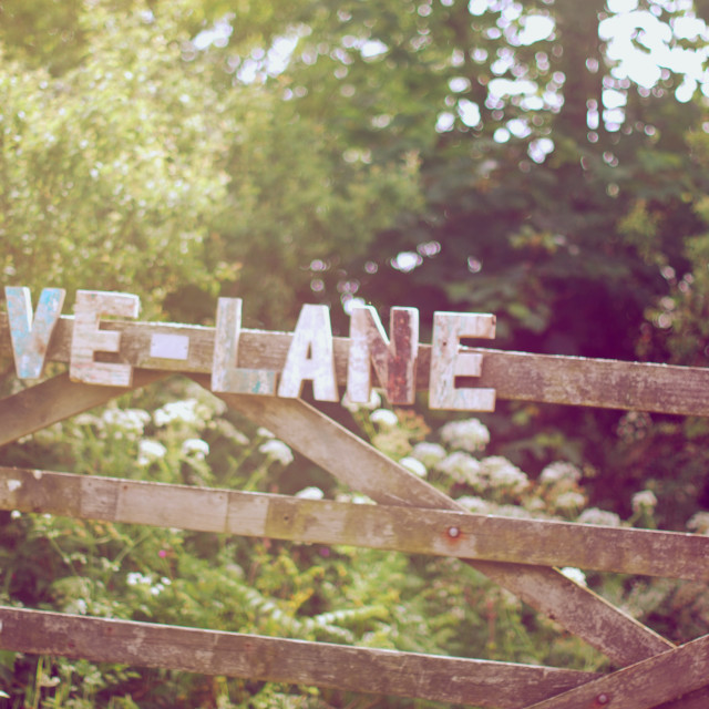 """Love Lane Gate"" stock image"