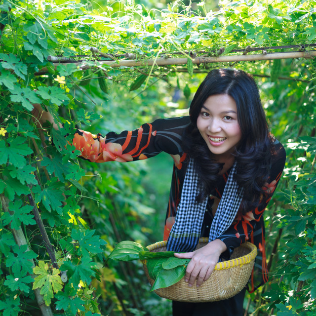 """Young vietnamese woman wearing traditional Vietnamese dress (ao ba ba) in countryside Vietnam"" stock image"