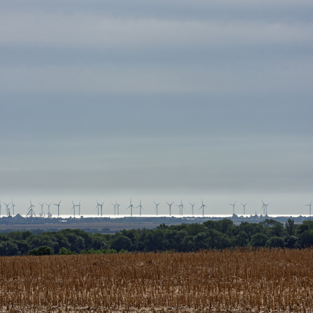"""Coastal Wind Farm"" stock image"