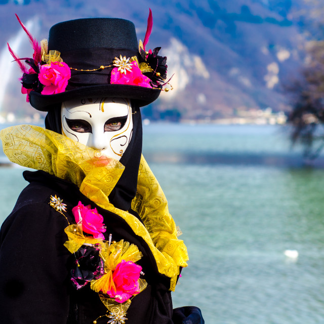 """A Masquerader At The Annecy Carnivale"" stock image"