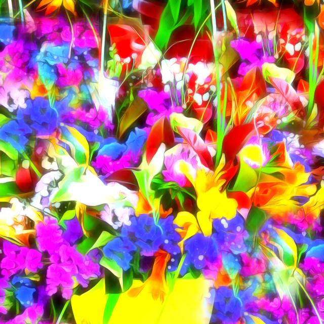 """""""Les Jolies Fleurs"""" stock image"""