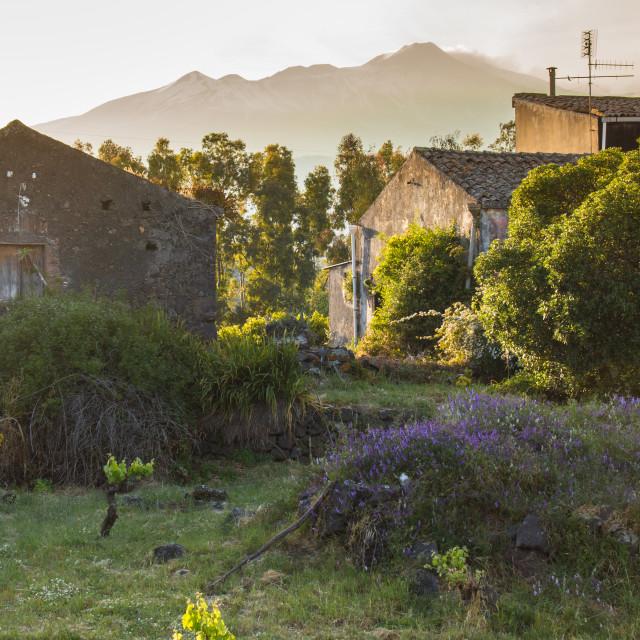 """""""Mount Etna, Taormina, Sicily, Italy"""" stock image"""