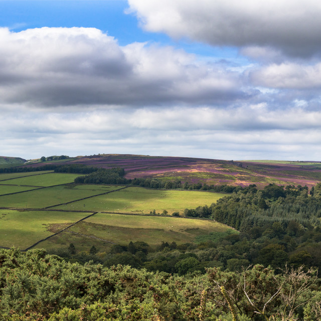 """View of Yorkshire"" stock image"