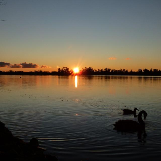 """Winter Sunset Lake in Australia"" stock image"