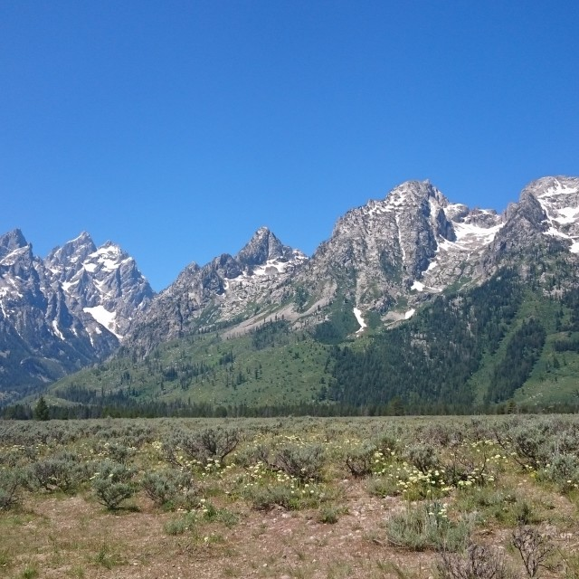 """Grand Teton Mountain's"" stock image"