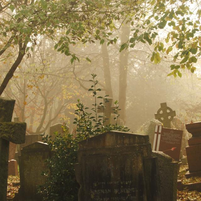 """Highgate Cemetery"" stock image"