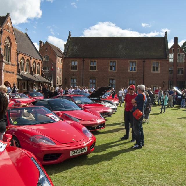 """""""Ferrari Festival"""" stock image"""
