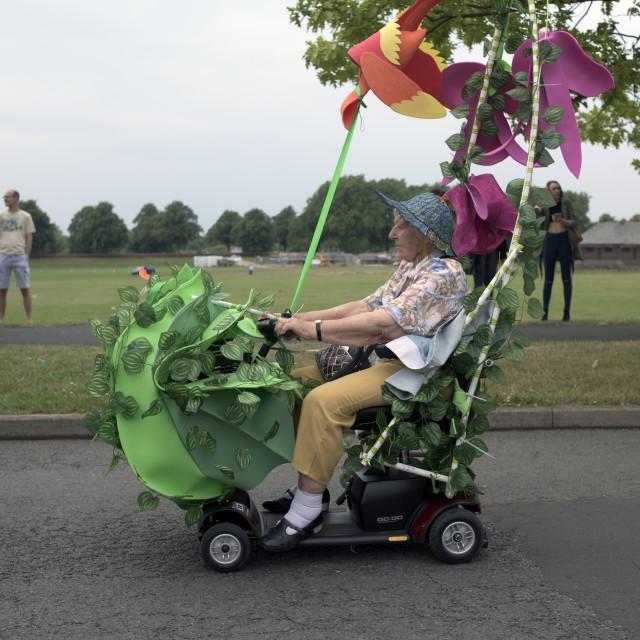 """""""Nottingham Carnival"""" stock image"""