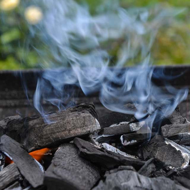 """Burning charcoal on barbecue grill"" stock image"