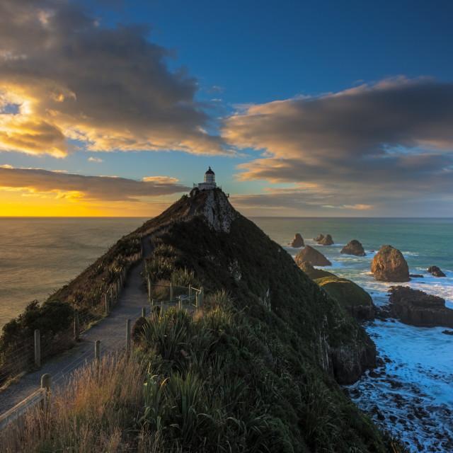 """""""Sunrise at Nugget Point Lighthouse, New Zealand"""" stock image"""