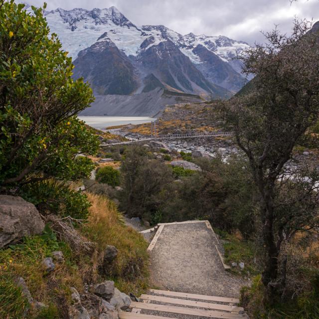 """""""Steps heading towards Hooker Lake, New Zealand"""" stock image"""