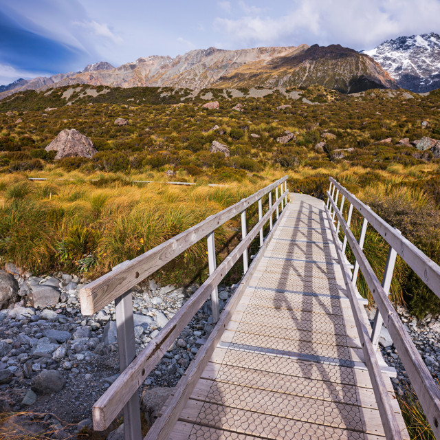 """A small bridge along the Hooker Valley"" stock image"