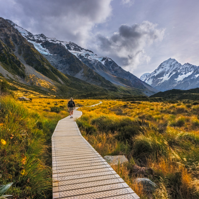 """Unknown hiker hiking the Hooker Valley track, Mount Cook."" stock image"