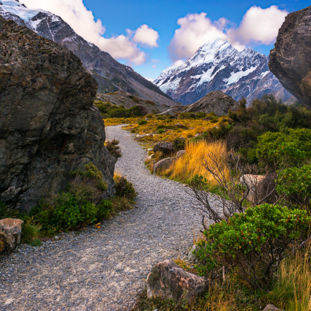 """Hooker Valley path"" stock image"