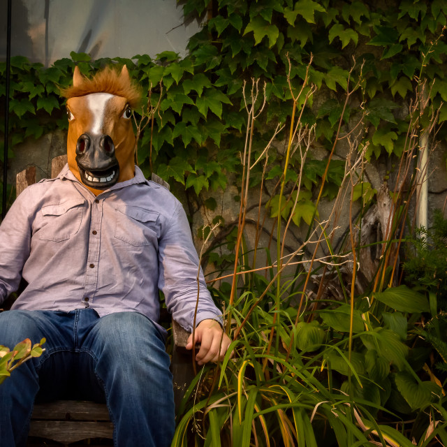 """Cosplay Horse Head 2"" stock image"