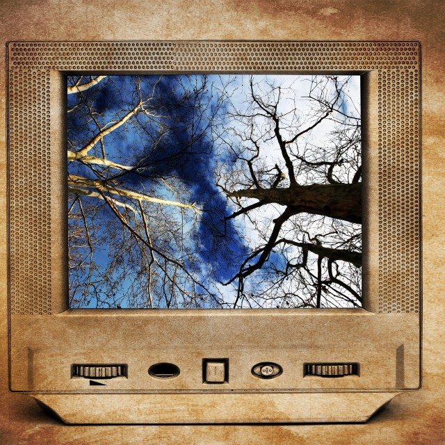"""Trees and blue sky on TV"" stock image"