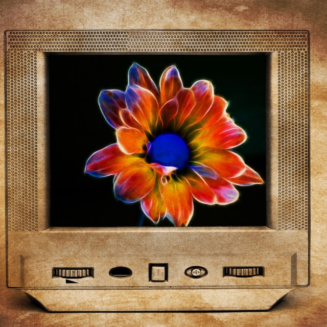 """Fractal flower on TV"" stock image"