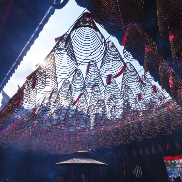 """Burning incense coils in a temple in Ho Chi Minh city, Viet Nam"" stock image"