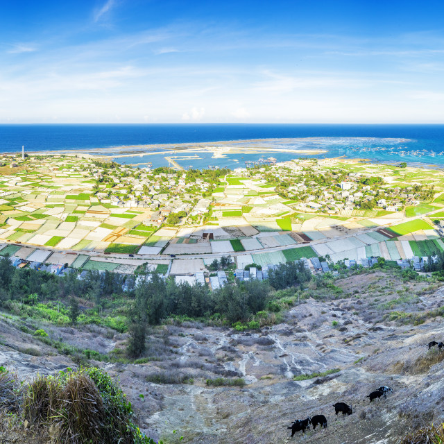 """Panorama Ly Son Island"" stock image"